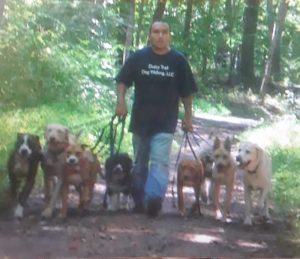 Dusty Trail Pet Sitting & Dog Walking